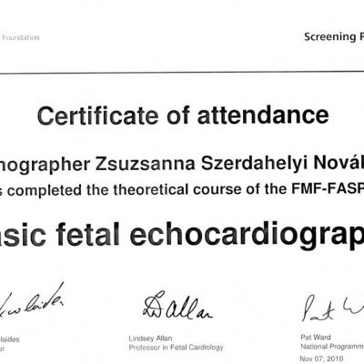 Certificate Of Attendance Basic Fetal Echocardiography 2010